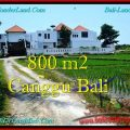 Exotic PROPERTY CANGGU BALI 800 m2 LAND FOR SALE TJCG194