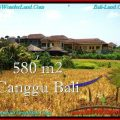 FOR SALE LAND IN Canggu Pererenan TJCG197