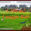 Magnificent PROPERTY 3,380 m2 LAND FOR SALE IN Canggu Echo beach TJCG199