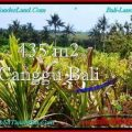 FOR SALE Magnificent PROPERTY 435 m2 LAND IN CANGGU BALI TJCG196
