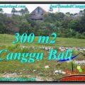 Magnificent PROPERTY LAND SALE IN Canggu Umalas BALI TJCG205