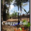 FOR SALE Magnificent LAND IN Canggu Pererenan TJCG208